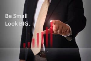A presentation of having a small business doesn't mean your system is small but be big